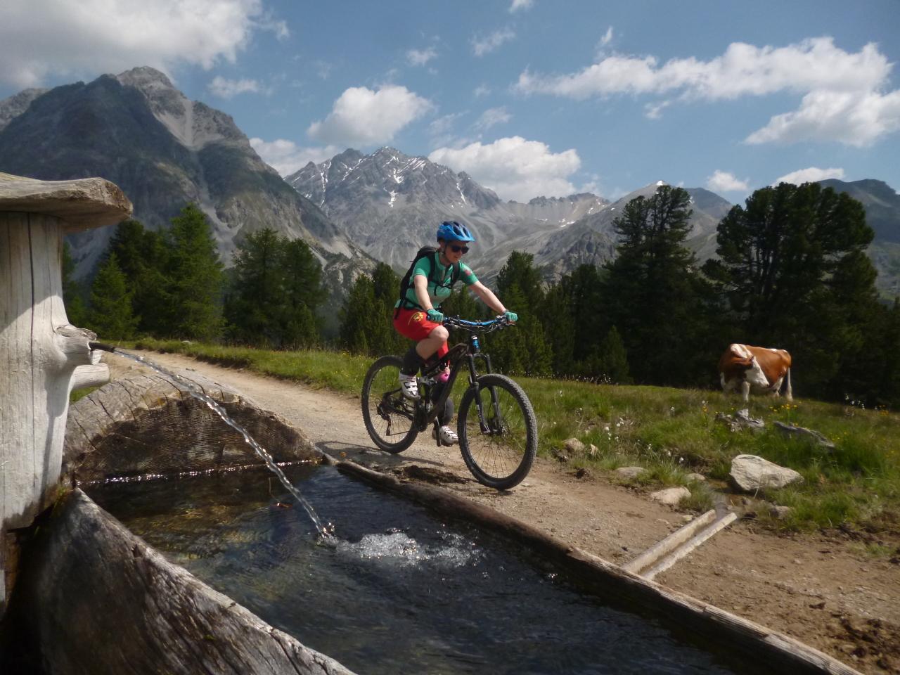 Mountainbiken im Untengadin
